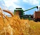 Новый налоговый кодекс губителен для аграриев