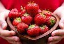Украинские ягоды ценятся во всей Европе
