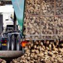 В Украине станет больше сахарных заводов