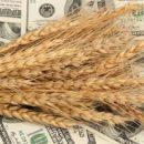 Глава «УкрАгроКонсалт» рассказал о стратегии по аграрному сектору