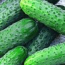 Борис Колесников считает, что украинских аграриев нужно поддерживать внутренними заказами