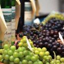 Борис Колесников считает, что для украинских виноделов нужно организовать европейские условия работы