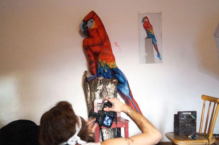 Что вы видите на этом изображении? Оптическая иллюзия с попугаем разлетелась по Сети