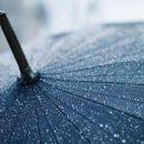 Ведущего прогноза погоды сдуло ветром в прямом эфире
