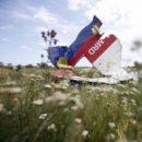 Трибунал по сбитого MH17 могут собрать в Нидерландах без РФ