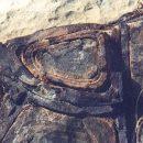 Возле Великой Техасской стены найден окаменевший инопланетный корабль