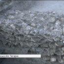 В Чигирине нашли катакомбы из черепов: 200 штук по пять ярусов вглубь