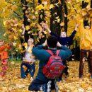 Осенние каникулы: школьникам подготовили новый график
