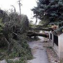 Четыре области Украины накроет шторм