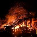За неделю на пожарах в Украине погиб 31 человек
