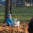 2 ноября в Украину придет потепление
