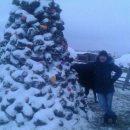 «Это Россия, детка»: россиянин слепил новогоднюю елку из навоза