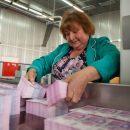 Депутат официально за месяц заработает в 16 раз больше украинца