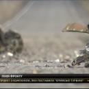Бронированную машину разорвало на куски: Подробности гибели украинских бойцов в АТО (видео)