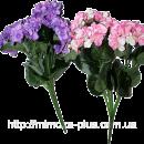 Искусственные цветы по лучшим ценам