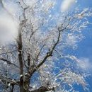 К концу марта вернутся морозы, потеплеет на Пасху