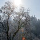 Украинцам обещают мороз до -12