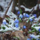 Прогноз погоды на 30 марта: аномальная жара и снег