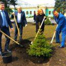 Депутаты начали Пасхальные праздники с высадки деревьев