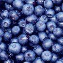 Ученые нашли в ягодах вещества, уничтожающие рак