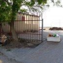 Несезон и голуби: в сети показали новые печальные фото пляжей в Крыму