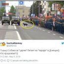 В Сети измываются над собакой, принявшей участие в параде «ДНР»