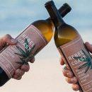 Пей и не пьяней: в Калифорнии изобрели безалкогольное вино с каннабисом
