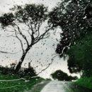 Покупайте красивые зонты: синоптик предупредила о шквальных дождях