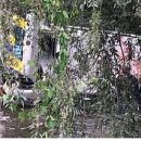 Полицейское авто во время погони слетело в реку под Киевом (видео)