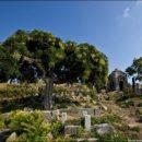 В Крыму закончились места на кладбищах: оккупанты придумали выход