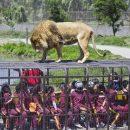 В Китае открыли уникальный зоопарк, в котором в клетках сидят люди