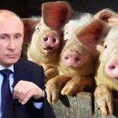 «Считает себя царем»: как бойцы ВСУ на Донбассе «Путина» ловили (видео)