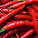 Ученые назвали продукт, «сжигающий» лишние килограммы