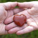Этот простой способ поможет проверить здоровье сердца
