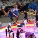 Цирковой верблюд покалечил шесть детей в цирке Питтсбурга (видео)