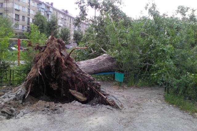 Киевляне продолжают шутить над ночной непогодой