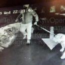 Жестокое убийство сотрудника УГО в центре Киева попало на видео