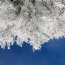 На Різдво в Україні буде до -16 градусів