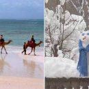 На Африку обрушился сильный снегопад