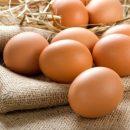Медики рассказали, как правильно употреблять яйца, чтобы они приносили пользу для здоровья