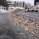 Российский город завалило тысячами рыбьих голов (видео)