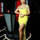 Тіна Кароль знову вразила відвертою сукнею (фото)