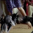 Легендарные спецэффекты индийского кино, которые вызовут приступ смеха