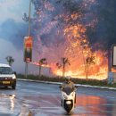 Огненный ад в Израиле: из-за пожарищ даже не видно неба (видео)