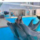 Кравец из Квартала 95 раскритиковали за фото из дельфинария