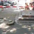 В центре Днепра с фасада здания на женщину упала часть декора