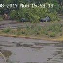 В Мелитополе огромное дерево рухнуло на проезжавший автомобиль