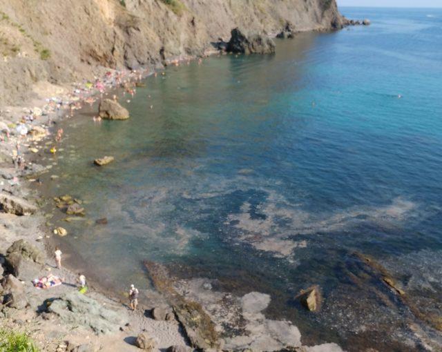 В сети появились кадры нового экологического ЧП в Крыму