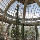 В Сети показали разрушенный зимний сад в Крыму (фото)