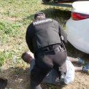 В Белой Церкви копы жестко задержали пьяного прокурора